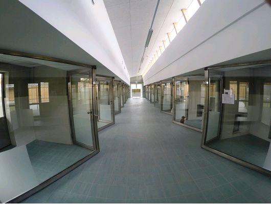 Vienna viewing kennels