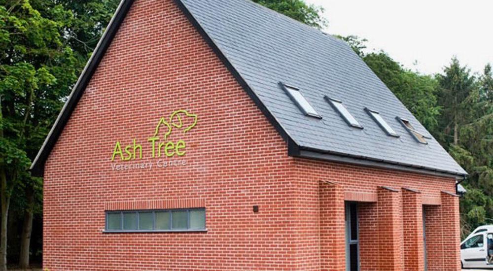 Case Study - Ash Tree (1)